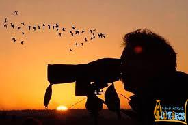 Avistamiento de Aves migratorias en La Siberia