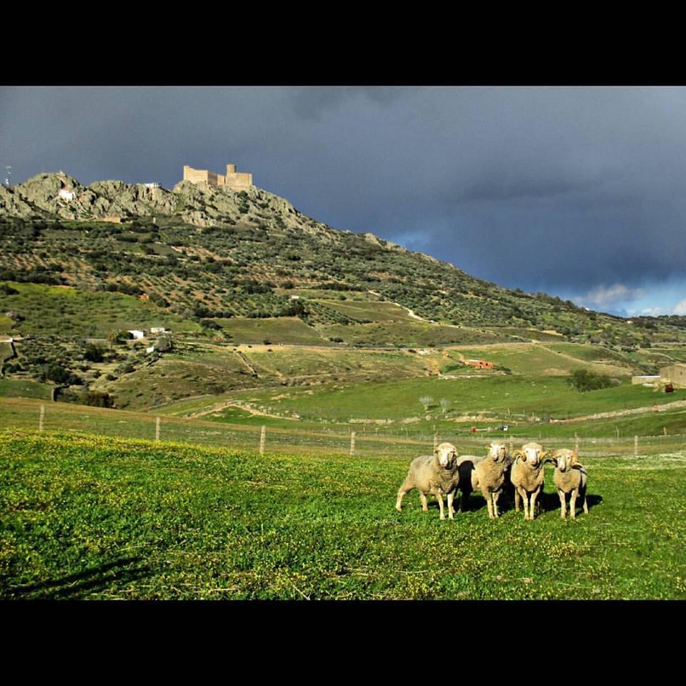 Extremadura Sibérie
